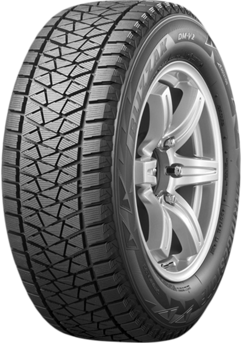 Bridgestone Blizzak Dm V2 pneu