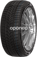 Minerva Frostrack UHP 205/55 R16 94 H XL